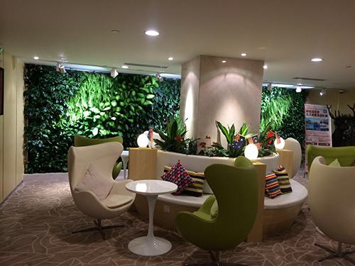 碧桂园办公室植物墙