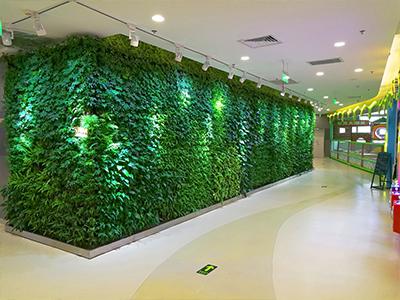 南门立体植物墙