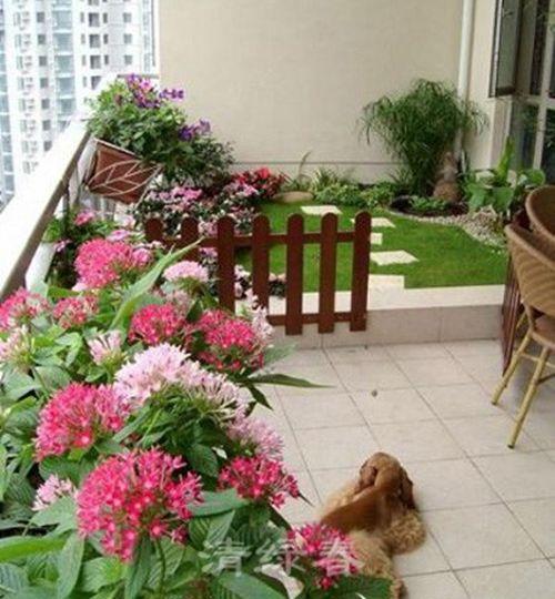 阳台花园200
