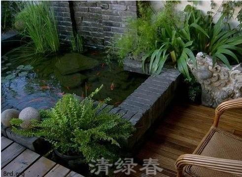 阳台花园205