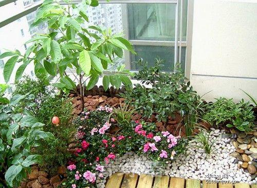 阳台花园203