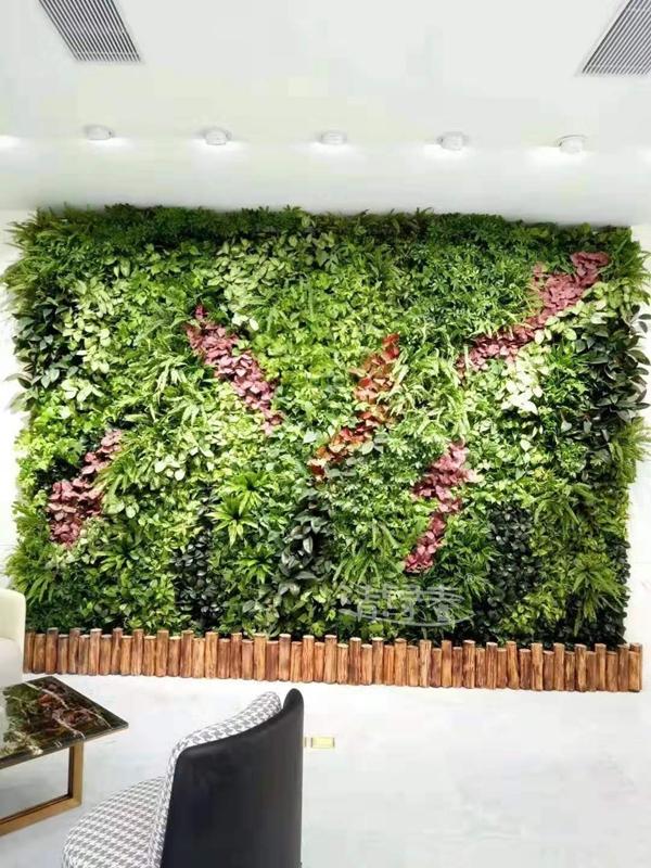 办公区间墙体绿化