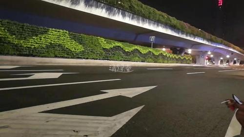 高架桥底市政园林绿化