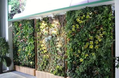 酒店餐厅绿化