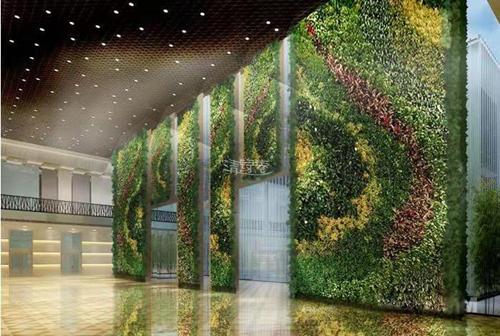 展馆间隔墙体绿化