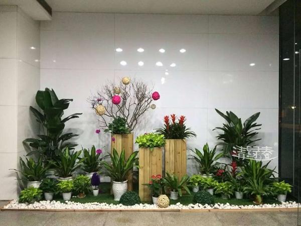 园艺组景形式