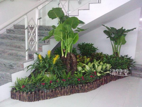 组景园艺养护