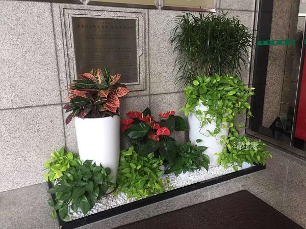 园艺组景设计