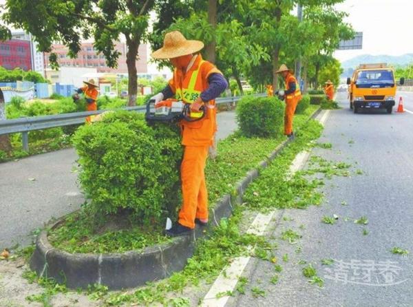 广州绿化工程哪家公司的实力比较强?